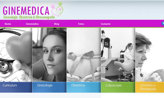 www.ginemedicasal.com